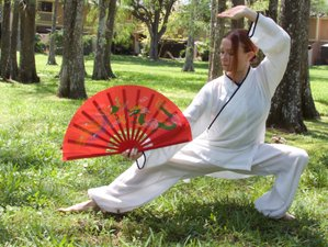 10 Day Immersion Kung Fu Training in North Carolina