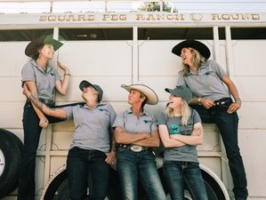 7 Day Volunteer Horse Riding Vacation in the Santa Fe Area