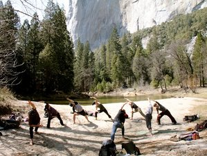 3 Days Living Authentically Yoga Retreat in Yosemite, USA