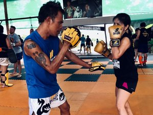 7 Day Traditional Muay Thai Training in the Ancient City of Phitsanulok