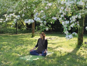 5 Day Mindfulness, Meditation, and Yoga Holiday near Le Havre, Normandy