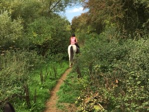5 Days Self-Catering Horse Riding Holiday with Hacking and Lessons in Oxfordshire, UK