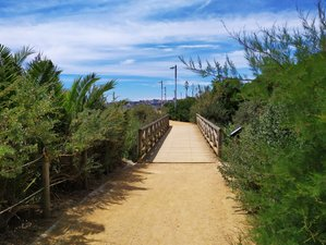 5 Days Rejoicing Yoga and Walk by Nature Retreat in Cascais, Portugal
