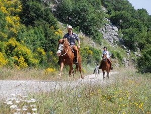 8 Days riding out and 3 days Etruscan Trail Horse Riding Holiday in Tuscany, Italy