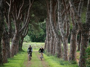 11 Days Coast to Coast Cycling Tour from Fano to Argentario in Italy