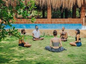 8 Day Osho Meditation and Mindfulness Training Retreat in Morjim, Goa