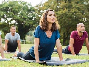 23 Day 200-Hour Yoga Teacher Training Course in Rishikesh