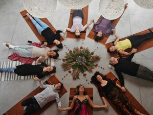 23 Days 200-Hour Hatha Vinyasa Yoga Teacher Training in Hiiumaa, Estonia