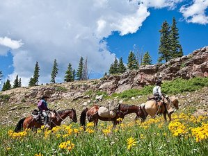 3 Day Pack Trip Horseback Riding Holiday in The San Juan Mountains Area, Colorado