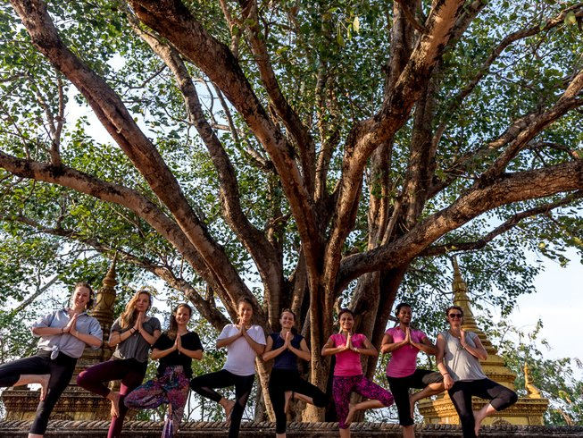 29 Days 200-Hour Multimedia Courses and Yoga Teacher Training in Siem Reap, Cambodia