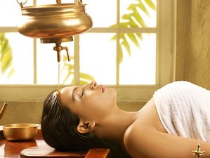 10 Day Ayurveda Retreat with Vamana Therapy, Detox, Meditation, and Yoga in Goa