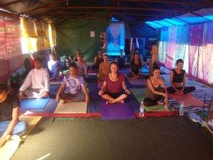28 Days 200-Hour Hatha, Ashtanga, Therapy and Sivananda Yoga Teacher Training in Dharamsala, India