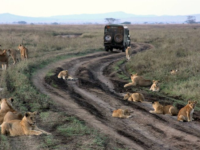 4 Days Special Game Parks Safari in Kenya