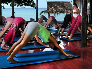 29 Days Premium Detox Juice Cleansing and Yoga Holiday in Koh Phangan, Thailand