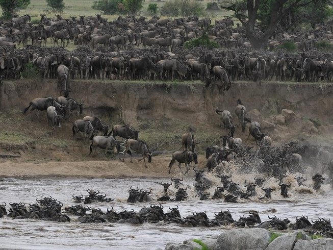 11 Days Ultimate Experience Tanzania Safari