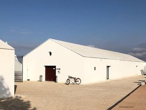 9 Days Culinary Holiday for Wine Lovers in Alentejo, Portugal