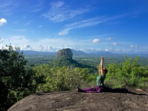 9 Days Culture, Nature, and Yoga Retreat Sri Lanka