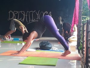 26 Days 200-Hour Multi Style Yoga Teacher Training in Goa, India