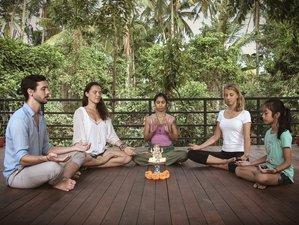 "6 Days ""The Art of Healing"" Meditation Retreat in Bali, Indonesia"