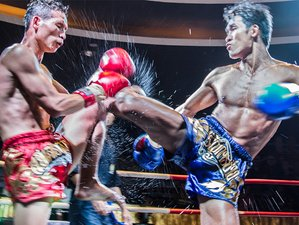 14 Days/Nights Muay Thai Camp Chiang Mai Thailand