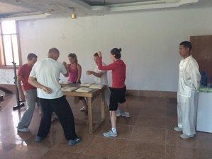 4 Months Learn Kung Fu, Qigong, Taichi in China