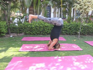 200 Hour Yoga Teachers Training Course (TTC) in Rishikesh, India