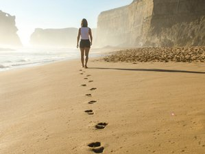 Walking Meditation Retreats