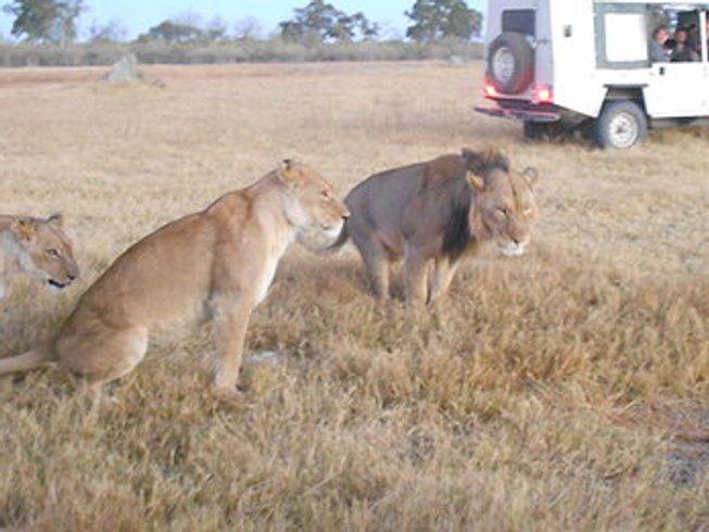 12 Days Okavango Delta Safari in Botswana