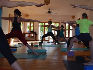 8-Daagse Surf en Yoga Retraite in Mexico