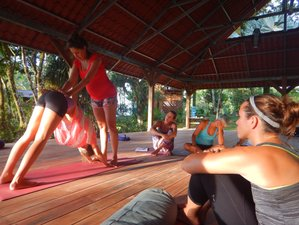 36 Days 300-hour Yoga Teacher Training in Costa Rica