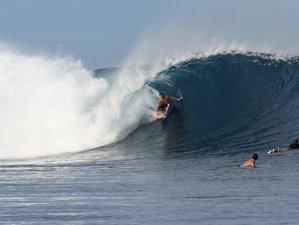 7 Days All Levels Surf Camp in Nadi, Fiji