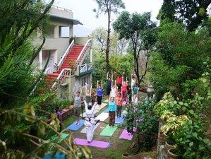 4 Day 25 Hours Yoga Retreat in Rishikesh