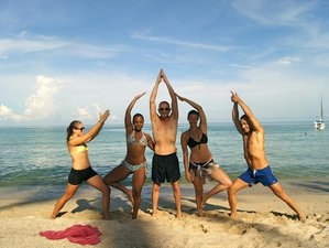 24 Days 200-Hour YTT in Koh Phangan, Thailand
