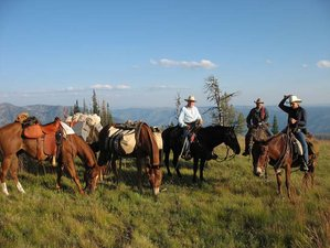 7 Days Mountain Pack Trip and Ranch Vacation in Idaho, USA