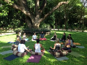 28 Days 200-Hour Teacher Training in Chiang Mai, Thailand