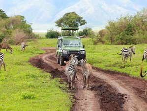 4 Days Tailor Made Private Honeymoon Safari in Tanzania