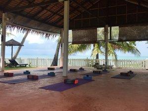 4 Days Christmas Meditation and Yoga Retreat in Koh Samui, Thailand