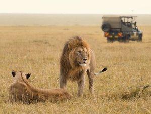 5 Days Amazing Safari in Kenya