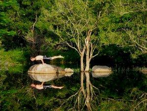 15 días retiro de yoga Ashtanga en Sri Lanka