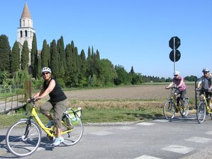 7 Days Alpe Adria Self-Guided Cycling Tour in Italy