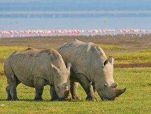 5 Days Masai Mara, Lake Nakuru, and Lake Naivasha Safari in Kenya