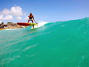 5 Days Surf Camp in Christ Church, Barbados