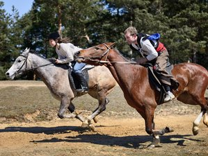 5 Days Forest Horse Riding Holiday on Rila and Pirin Mountains, Bulgaria