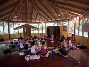7 Day Retreat of Self-Discovery With Meditation, Coaching, or Healing Session in Puerto Viejo