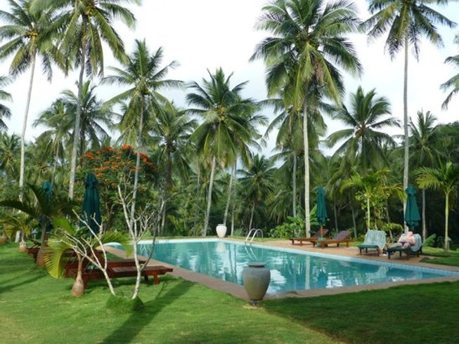 11 jours en retraite de yoga et méditation relaxante dans la province du centre, Sri Lanka