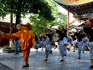 3 Days Authentic Shaolin Kung Fu Training in Shaolin Temple Yunnan, China