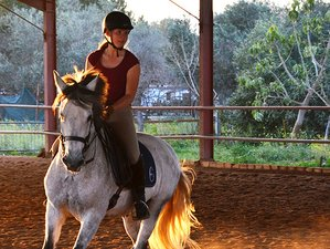 5 Day Trail Riding and Dressage Combo Holiday in Carmona, Sevilla