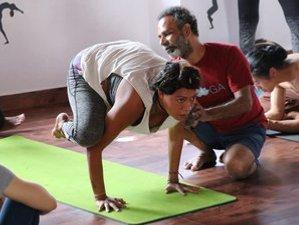 24 Days 200-Hour Ashtanga Vinyasa Yoga Teacher Training Course in Gokarna, India