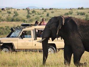 7 Days Magnificent Safari South Africa