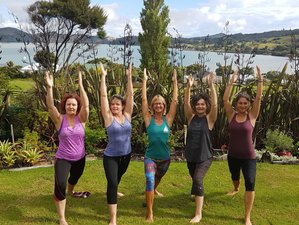 7 Day Holistic Yoga, Meditation, and Hiking Retreat by The Sea in McLeod Bay, Whangarei Heads